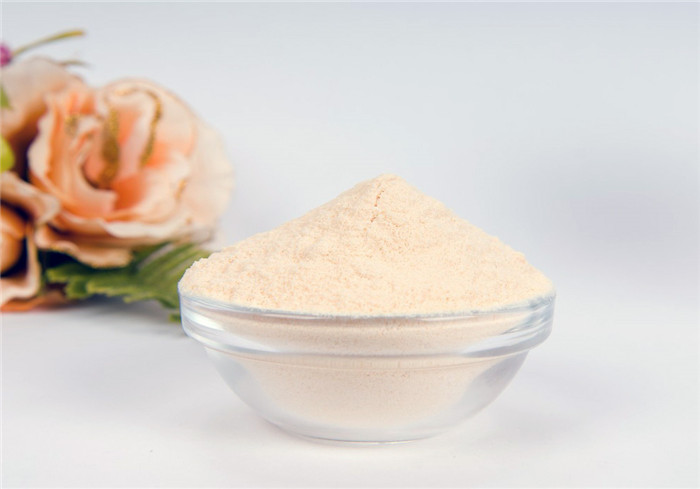 Pharmaceutical Grade NON GMO Soya Lecithin Powder